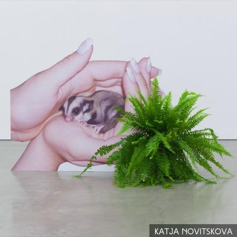 01 ssstendhal arte nuevas materialidades katja novitskova
