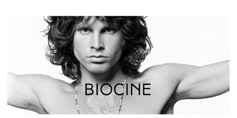 ssstendhal hipervinculo biocine