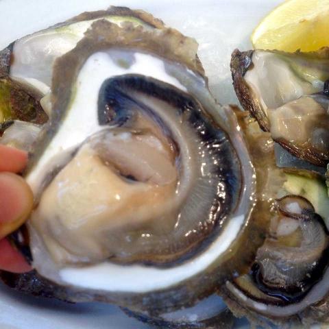 ssstendhal ocio croacia ostras en ston