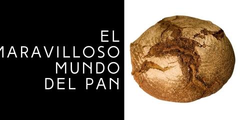 El maravilloso mundo del pan