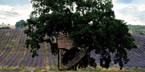 ssstendhal arte casas de arbol la piantata suite bleue 09