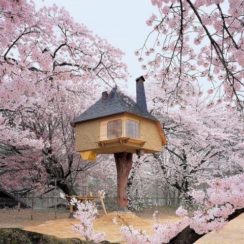 ssstendhal arte casas de arbol terunobu fujimori 15
