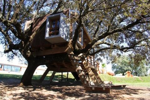 ssstendhal arte casas de arbol urbanarbolismo casa enraizada imagen 02