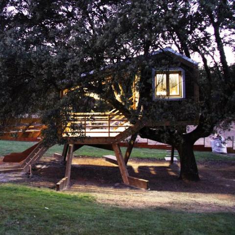 ssstendhal arte casas de arbol urbanarbolismo casa enraizada imagen 031