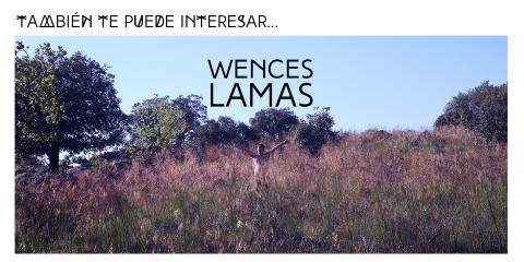 ssstendhal hipervinculo wences lamas